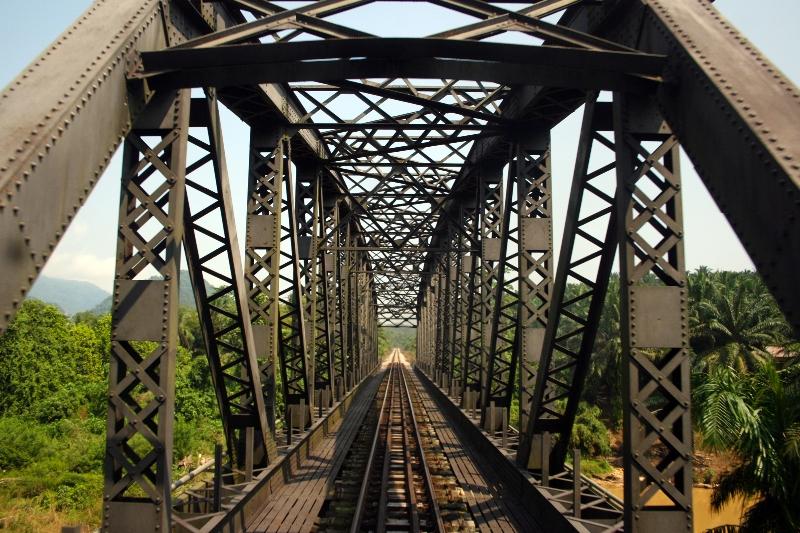 jungle-train-2